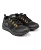 Picture of GOLDSTAR G10-G402 Lace-Up Trekking Shoes For Men