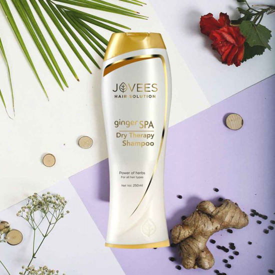 Picture of Ginger Spa Dry Therapy Shampoo-250ml
