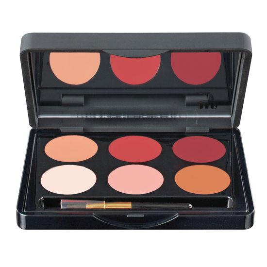Picture of Make Up Studio Lip Shaping Palette ( Nude Meets Plum)
